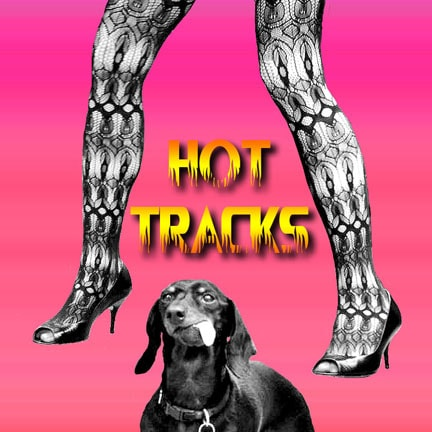 CD cover of 'Hot Tracks' by Hollander